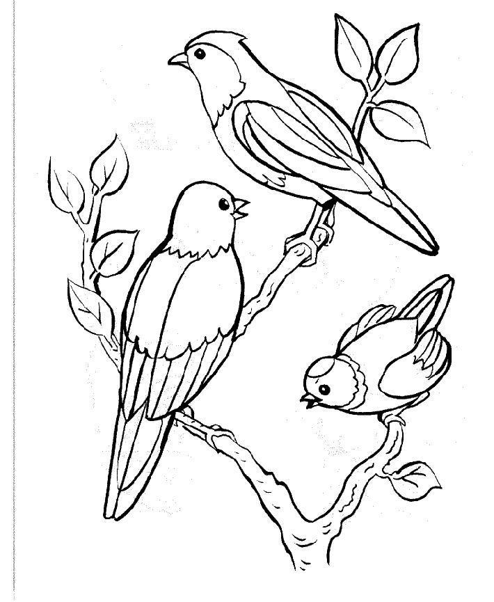 Coloriages à imprimer : Nature, numéro : 27614