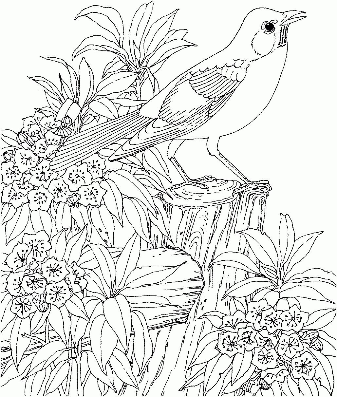 Coloriages à imprimer : Nature, numéro : 8b77ed17