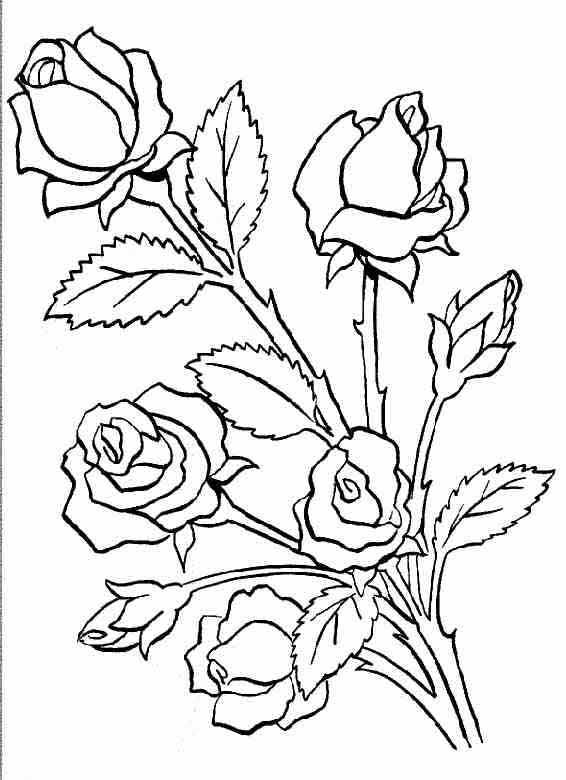 Coloriages à imprimer : Fleurs, numéro : 3141