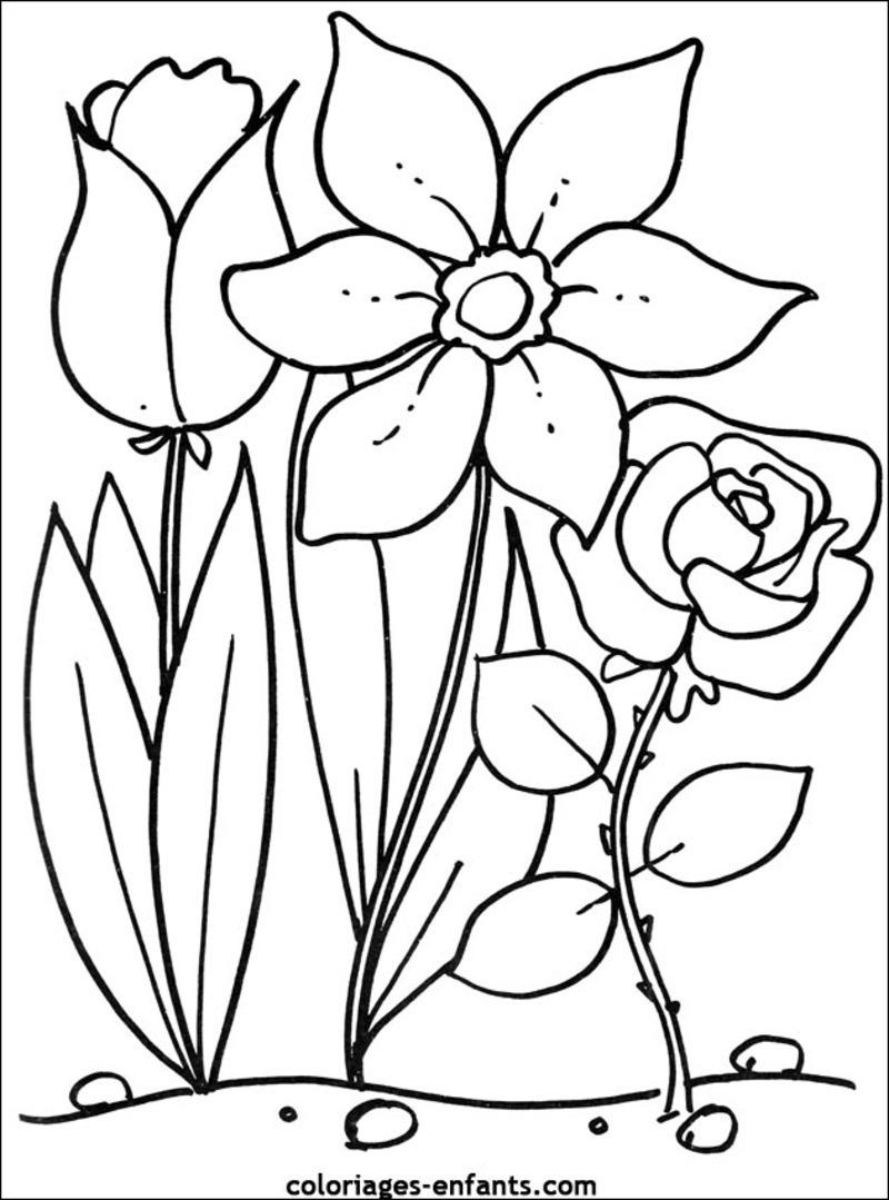 Coloriages à imprimer : Fleurs, numéro : 459287