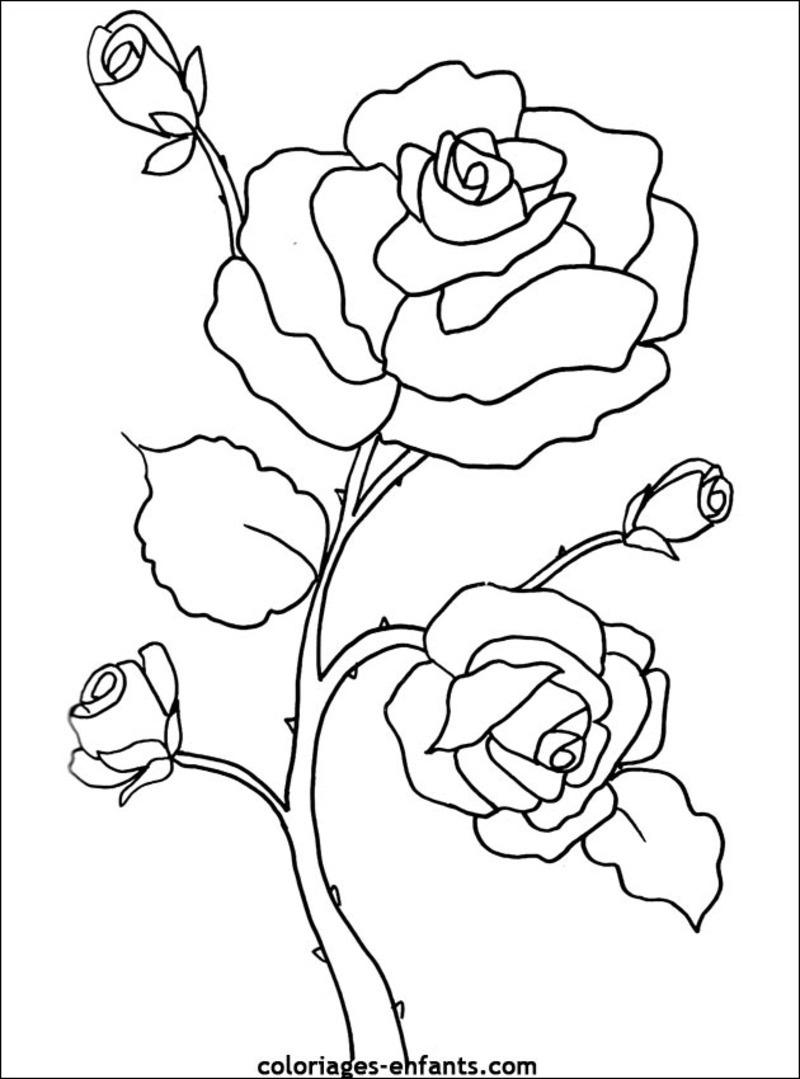 Coloriages à imprimer : Fleurs, numéro : 9deda6fd