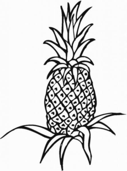 Coloriages imprimer Ananas