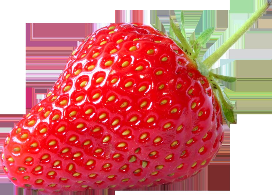 Dessin en couleurs imprimer nature fruits fraise num ro 476940 - Couleur fraise ecrasee ...