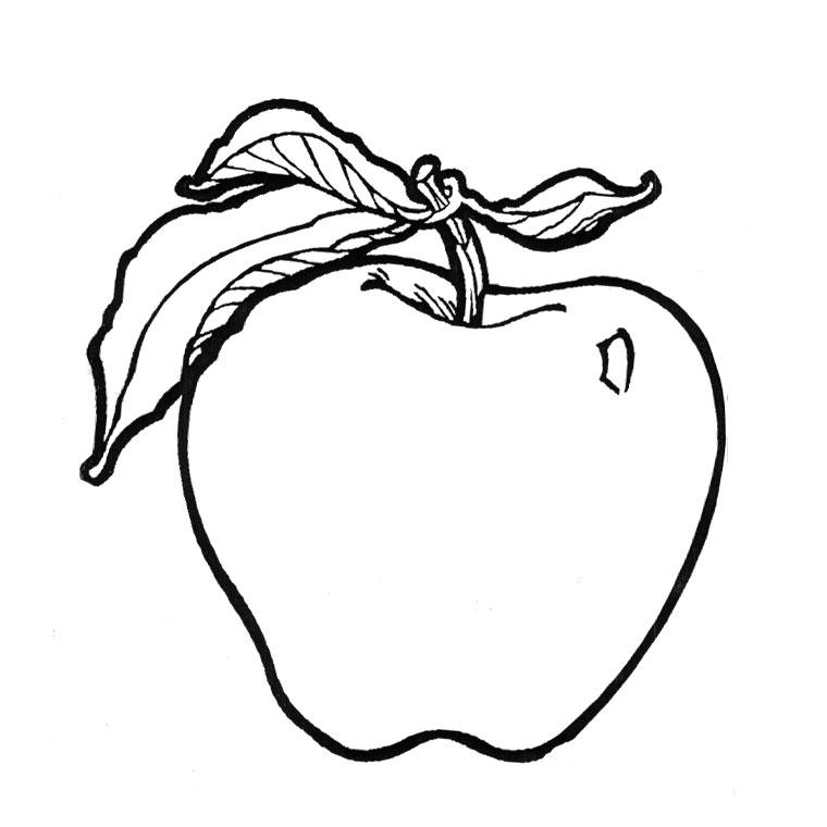 Coloriages imprimer pomme num ro 24348 - Dessin pomme apple ...