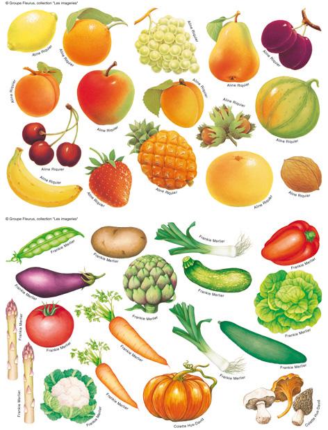 dessin en couleurs imprimer nature lgumes numro 13524