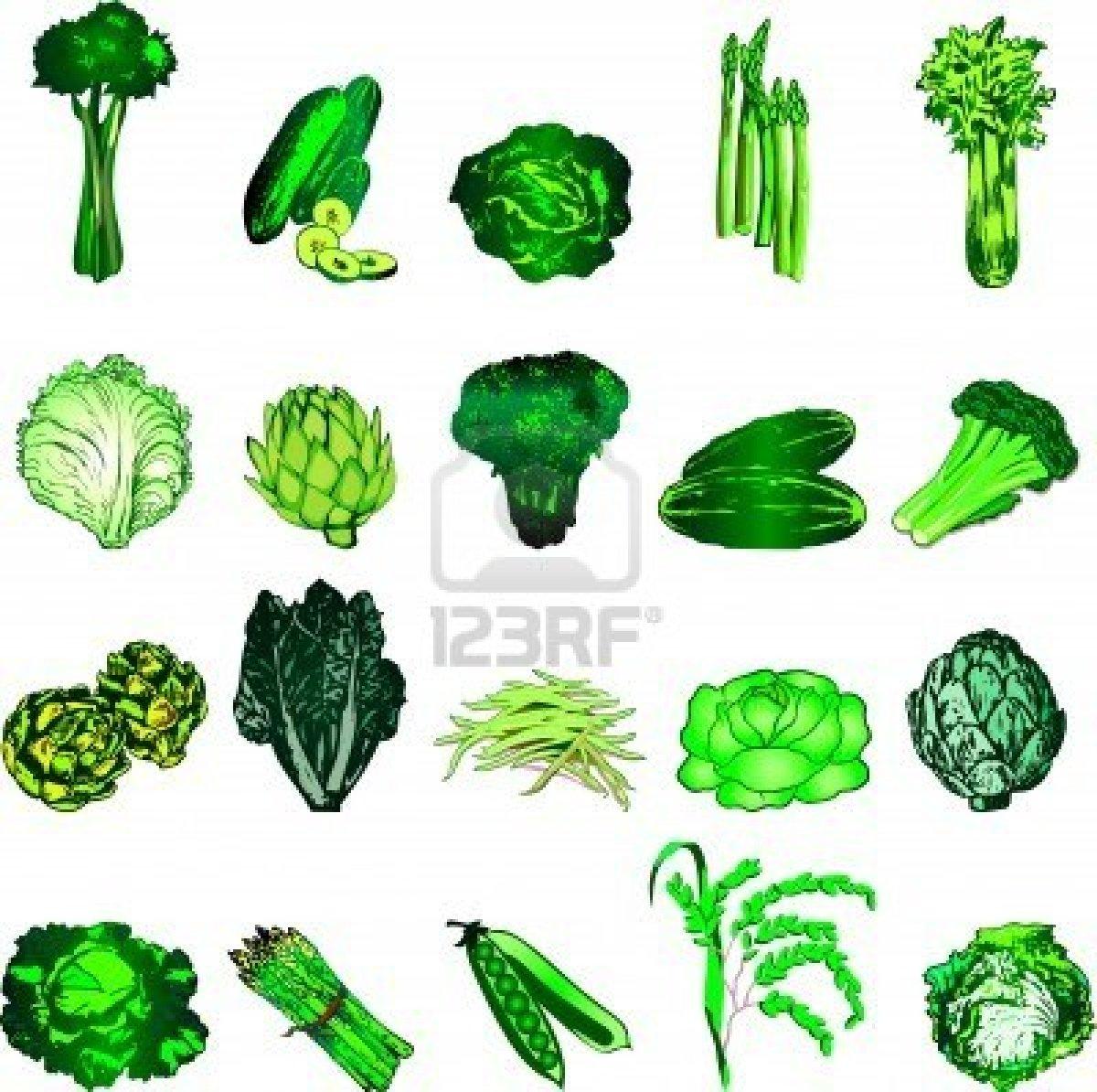 Illustration De 20 Icônes De Légumes Verts. Clip Art Libres De ...
