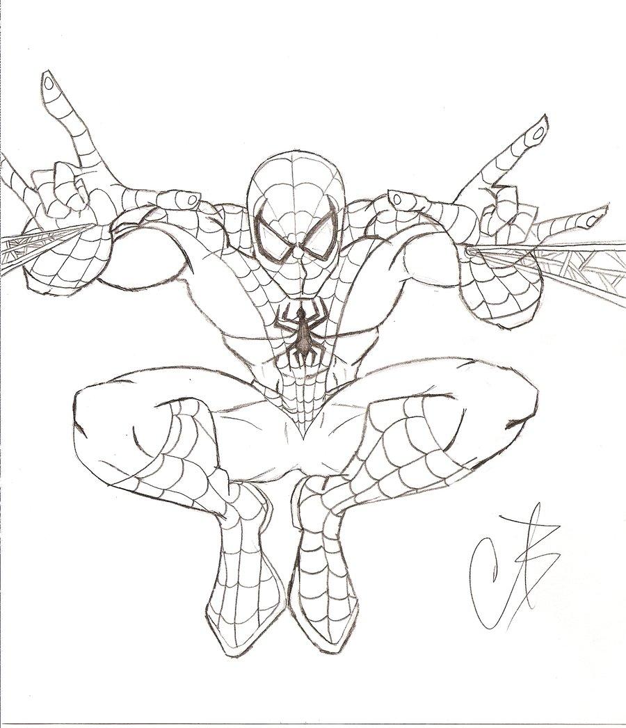 Dessins En Couleurs à Imprimer : Spiderman, Numéro : 22321