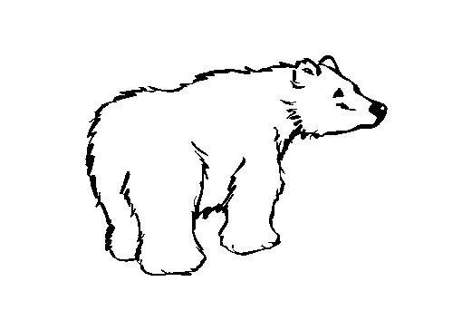 Coloriages à imprimer : Petit Ours brun, numéro : 1768