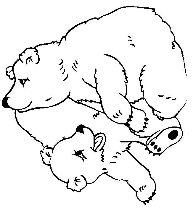 Coloriages à imprimer : Petit Ours brun, numéro : 1813