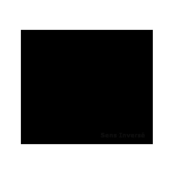 Célèbre à imprimer : Personnages féeriques - Fée Clochette numéro AE48
