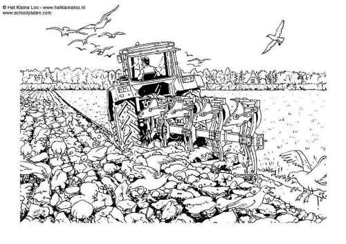 Coloriages à imprimer : Tracteur, numéro : 5804