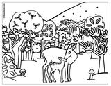 Imprimer le coloriage : Animaux, numéro 16256