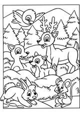 Imprimer le coloriage : Animaux, numéro 9eca5d05