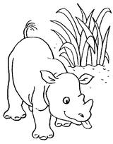 Imprimer le coloriage : Animaux carnivores, numéro 16263