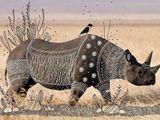 Imprimer le dessin en couleurs : Animaux carnivores, numéro 1aa90d65