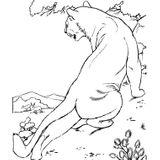 Imprimer le coloriage : Animaux carnivores, numéro 28184