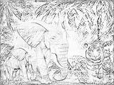 Imprimer le coloriage : Animaux carnivores, numéro 64674