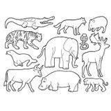 Imprimer le coloriage : Hyène numéro 25768