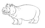 Imprimer le coloriage : Hyène, numéro 296839
