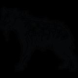 Imprimer le coloriage : Hyène, numéro 760179