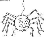 Imprimer le coloriage : Arachnides, numéro 56129