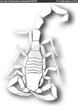Imprimer le coloriage : Arachnides, numéro 755771
