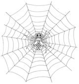 Imprimer le coloriage : Araignée, numéro 25719