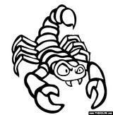 Imprimer le coloriage : Scorpion, numéro 256823