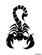 Imprimer le coloriage : Scorpion, numéro 26223