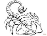 Imprimer le coloriage : Scorpion, numéro 4c461fa8