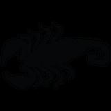 Imprimer le coloriage : Animaux - Arachnides - Scorpion numéro 756006