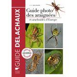 Imprimer le dessin en couleurs : Arachnides, numéro d7e49a7f
