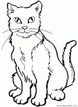 Imprimer le dessin en couleurs : Chat, numéro 117099