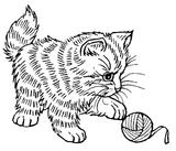 Imprimer le coloriage : Chat, numéro 145685