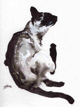 Imprimer le dessin en couleurs : Chat, numéro 20553