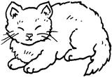 Imprimer le coloriage : Chat, numéro 4364