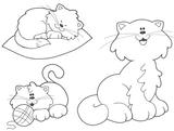 Imprimer le coloriage : Chat, numéro 5563