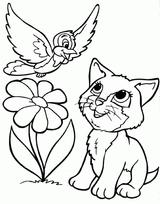 Imprimer le coloriage : Chat, numéro e840b44b