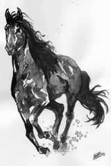 Imprimer le coloriage : Cheval, numéro 16963