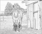 Imprimer le coloriage : Cheval, numéro 197090