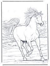 Imprimer le dessin en couleurs : Cheval, numéro 20890