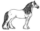 Imprimer le coloriage : Cheval, numéro 3725