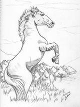 Imprimer le coloriage : Cheval, numéro 61828