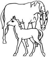 Imprimer le coloriage : Cheval, numéro 627d6015