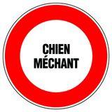 Imprimer le dessin en couleurs : Chien, numéro 20577