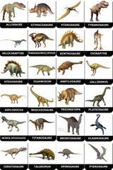 Imprimer le dessin en couleurs : Dinosaures, numéro 517771