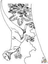 Imprimer le coloriage : Ankylosaure, numéro e6827d40