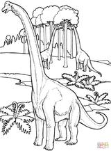 Imprimer le coloriage : Brachiosaure, numéro 5136b287