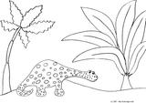 Imprimer le coloriage : Diplodocus, numéro 97769c31
