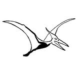 Imprimer le coloriage : Pterodactyle, numéro 220302